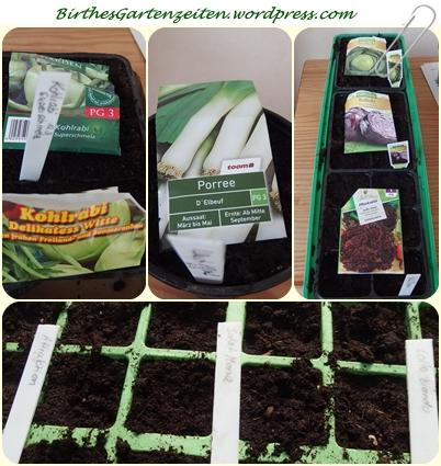 Aussaat 12.3.15 Salat, Kohlrabi, Kohl, 2015-03-10 008